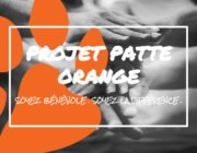 Join the Orange Paw Project – Volunteer. Be the Difference.