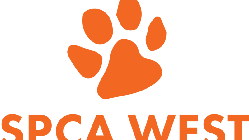 [Press Release] Code of Conduct for visitors implemented at SPCA Ouest